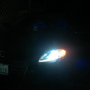 HID 12K Headlights with Blue Halo effect